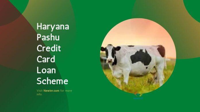Haryana Pashu Credit Card Loan Scheme